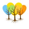 logo-methode-courte-brun copie